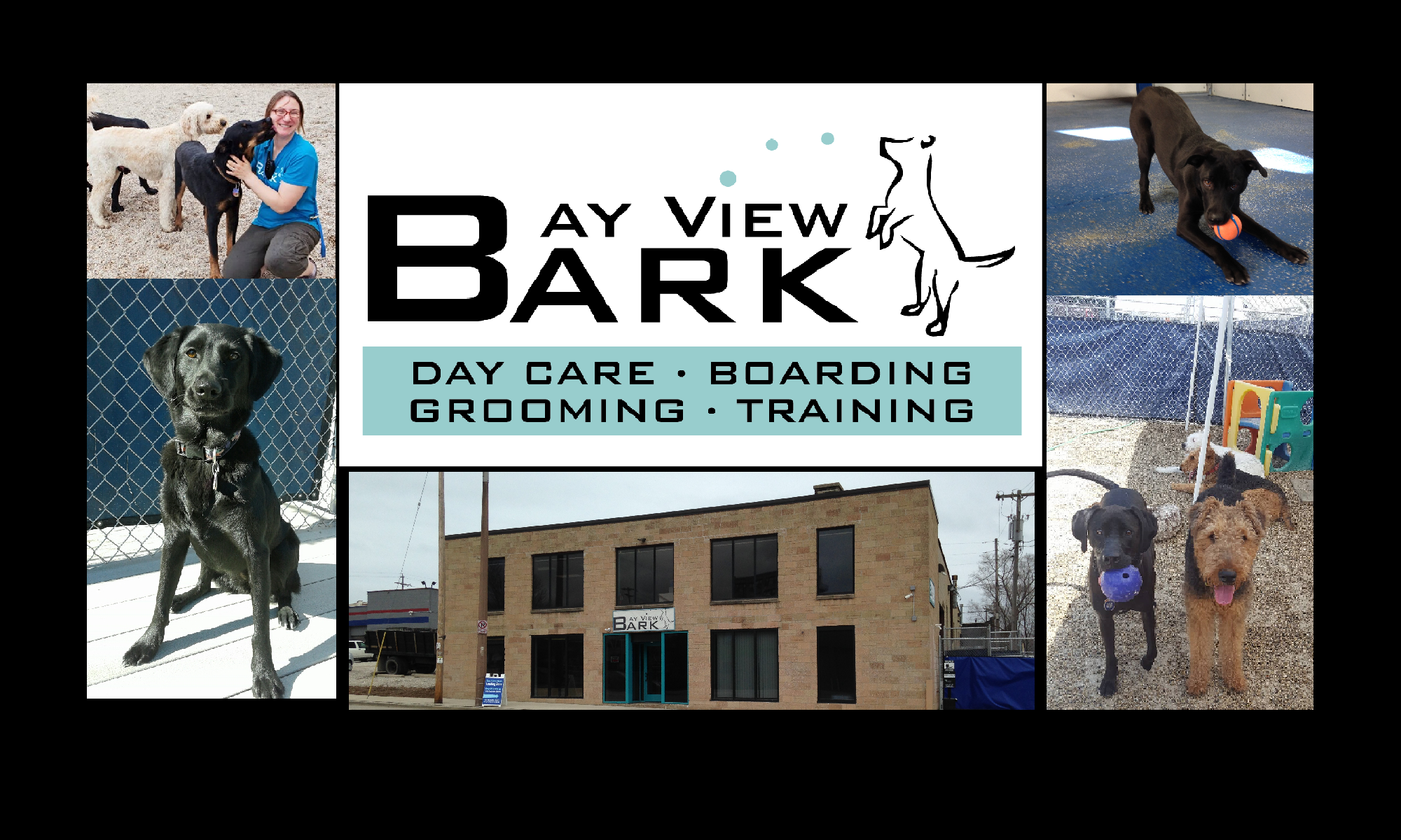 Bay View Bark